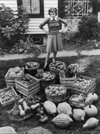 592295~Woman-Looking-at-Victory-Garden-Harvest-Sitting-on-Lawn-Waiting-to-Be-Stored-Away-for-Winter-Posters