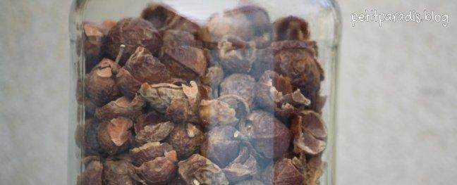 soapnuts pp