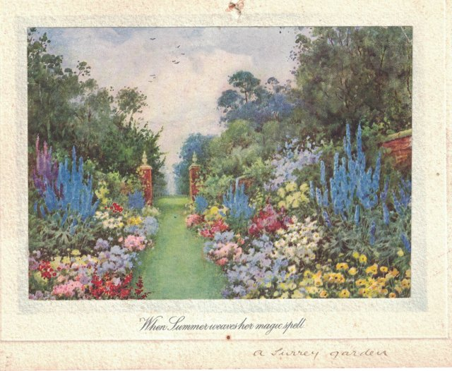 summer garden Flora Pilkington