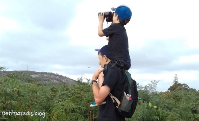birding pp