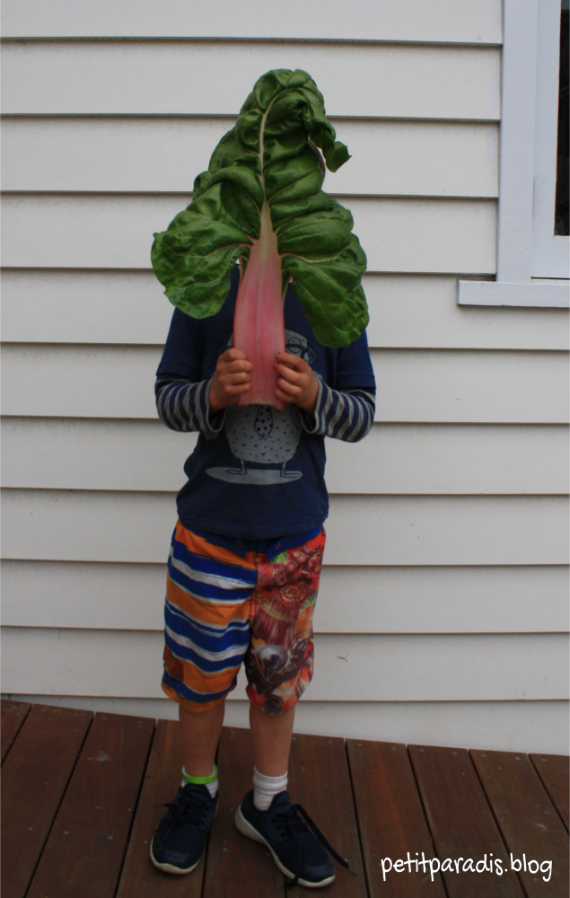 spinach head pp