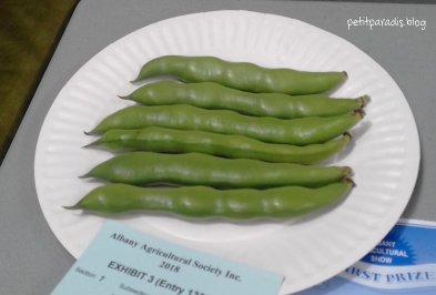braod beans pp
